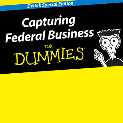 Capturing Federal Business for Dummies