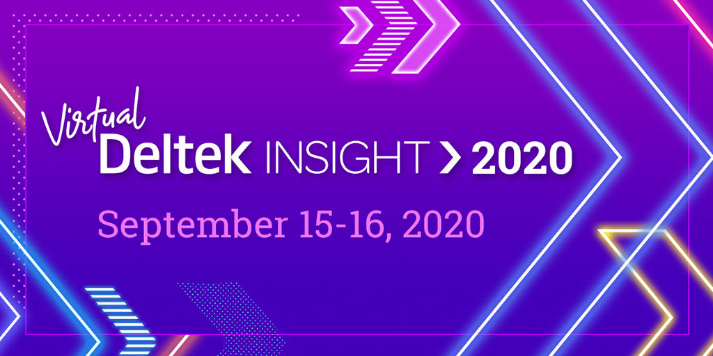 Deltek Virtual Insight 2020