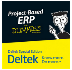 Project Based ERP for dummies
