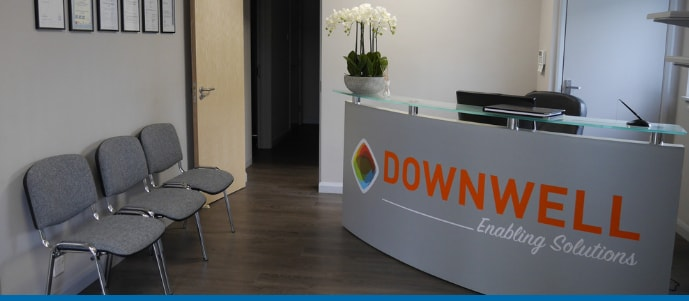 Downwell Group Reception