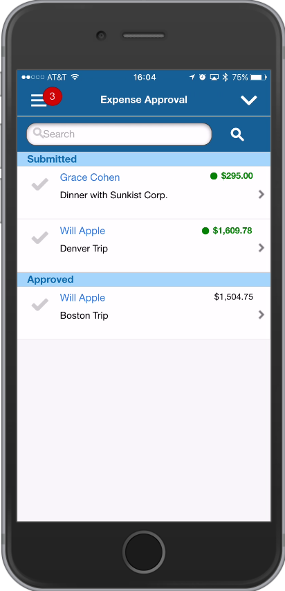 Vision 7.6 Touch Expense Approvals Review
