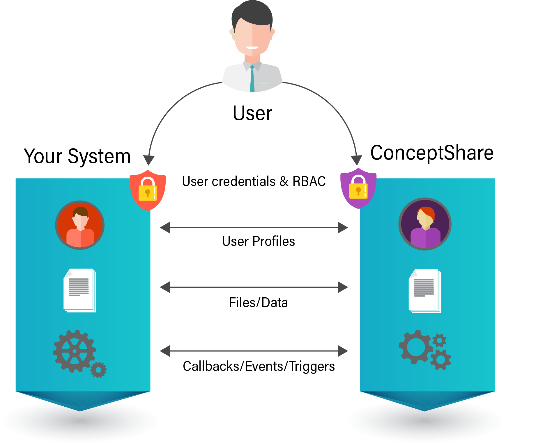 ConceptShare Side-by-Side Integration Model