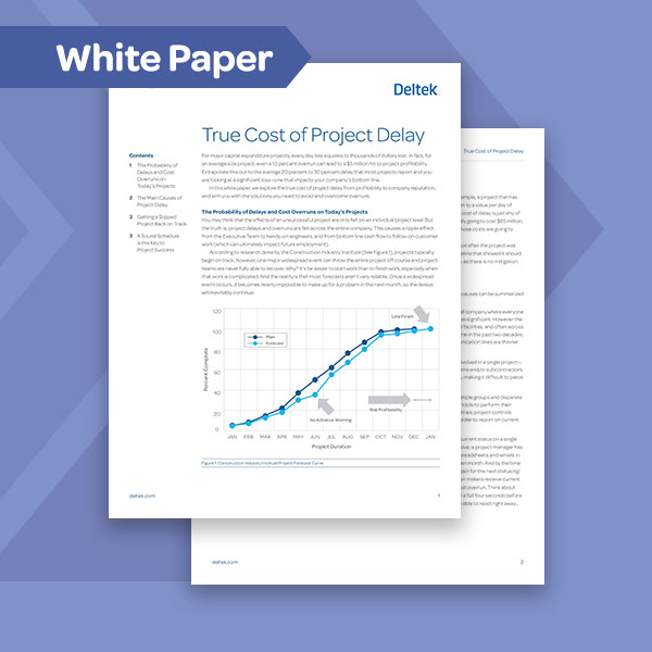 True Cost of Project Delay