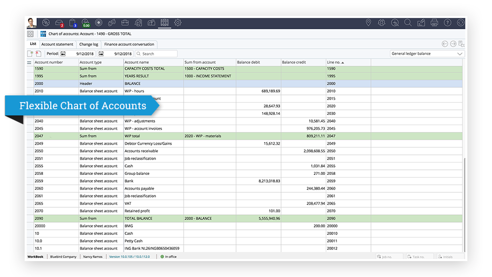 Flexible Chart of Accounts